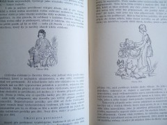 Fotka k inzerátu Kniha Praktická hospodyňka / 2491237